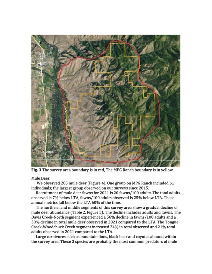 Total mule deer and fawn recruitment observed during spring aerial survey in the North Sapphire Range