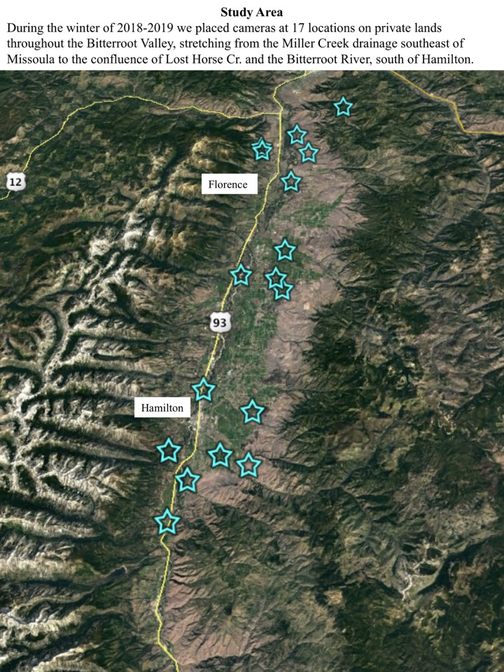 During the winter of 2018-2019 we placed cameras at 17 locations on private lands throughout the Bitterroot Valley