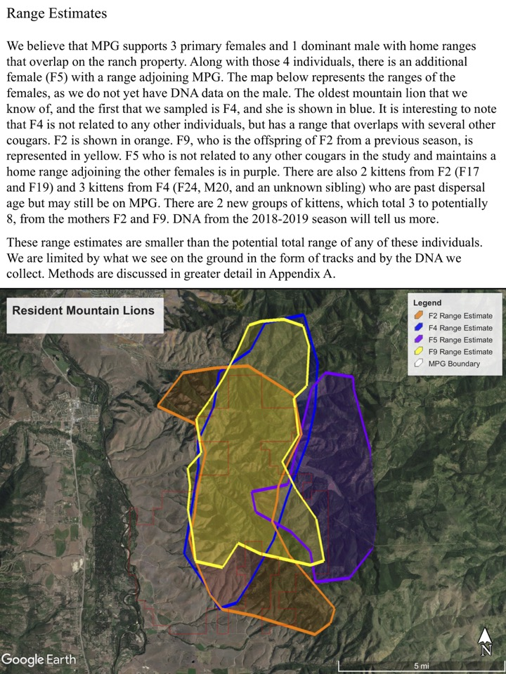 We believe that MPG supports 3 primary females and 1 dominant male with home ranges that overlap on the ranch property