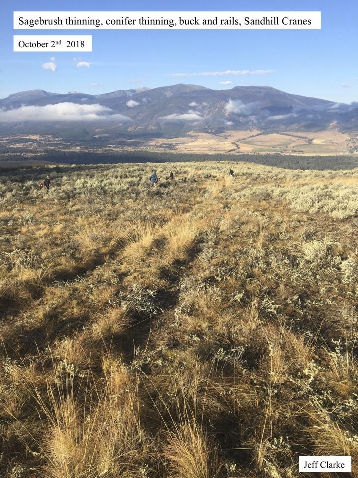 Sagebrush thinning, conifer thinning, buck and rails, Sandhill Cranes