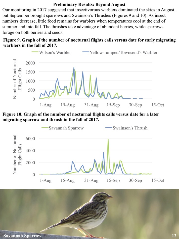 Our monitoring in 2017 suggested that insectivorous warblers dominated the skies in August, but September brought sparrows and Swainson's Thrushes