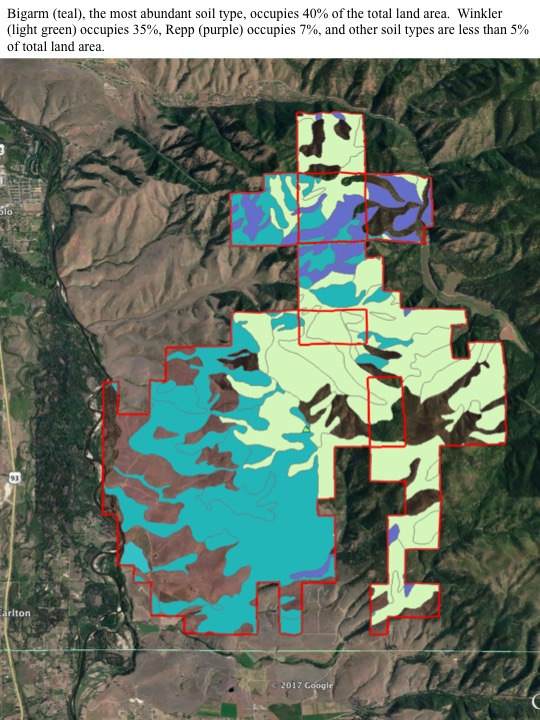 Bigarm (teal), the most abundant soil type, occupies 40% of the total land area. Winkler (light green) occupies 35%, Repp (purple) occupies 7%, and other soil types are less than 5% of total land area.