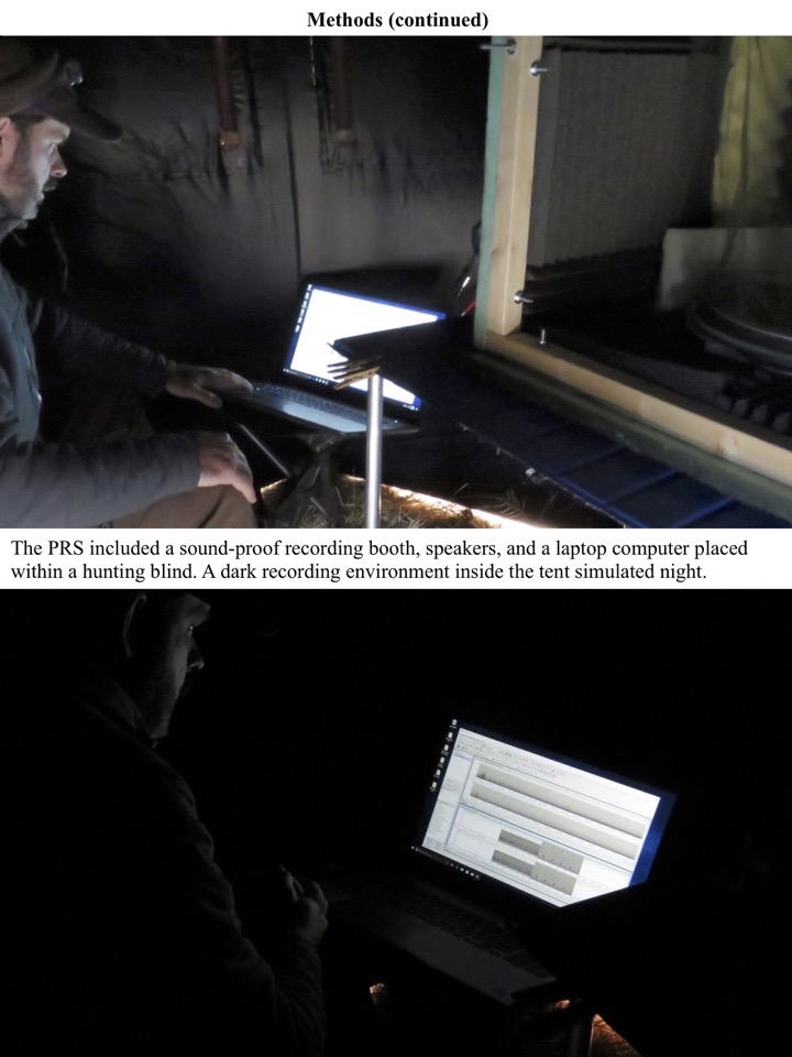 The PRS included a sound-proof recording booth, speakers, and a laptop computer placed within a hunting blind. A dark recording environment inside the tent simulated night.