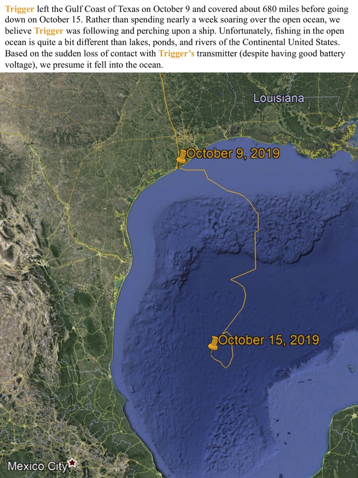 Trigger left the Gulf Coast of Texas on October 9 and covered about 680 miles before going down on October 15.