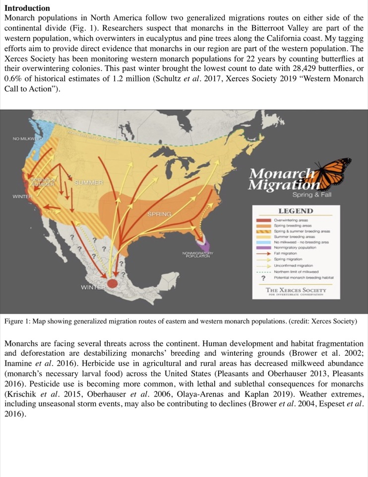 Monarch populations in North America follow two generalized migrations routes on either side of the continental divide