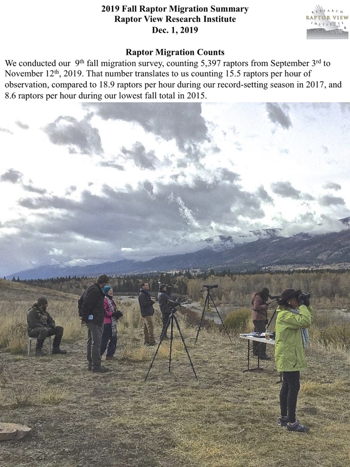 We conducted our 9th fall migration survey, counting 5,397 raptors from September 3rd to November 12th, 2019.