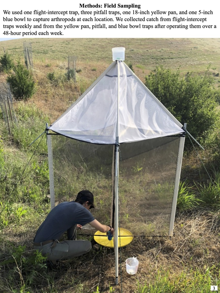 We used one flight-intercept trap, three pitfall traps, one 18-inch yellow pan, and one 5-inch blue bowl to capture arthropods at each location.
