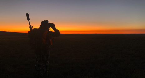 Dr. Kyle Dunning searches the landscape for pronghorn and deer in fall 2019.