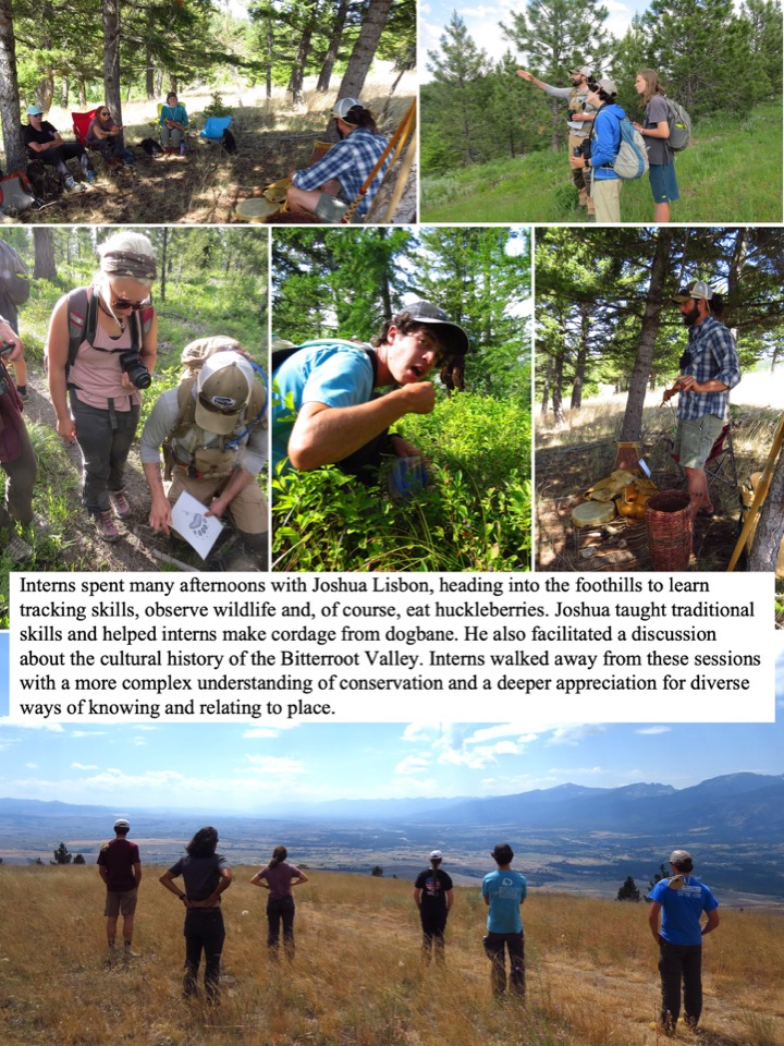 Interns spent many afternoons with Joshua Lisbon, heading into the foothills to learn tracking skills, observe wildlife and, of course, eat huckleberries.