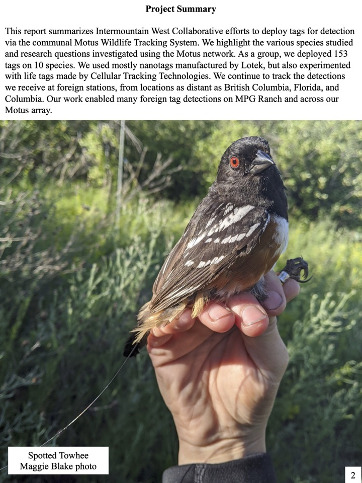 This report summarizes Intermountain West Collaborative efforts to deploy tags for detection via the communal Motus Wildlife Tracking System.