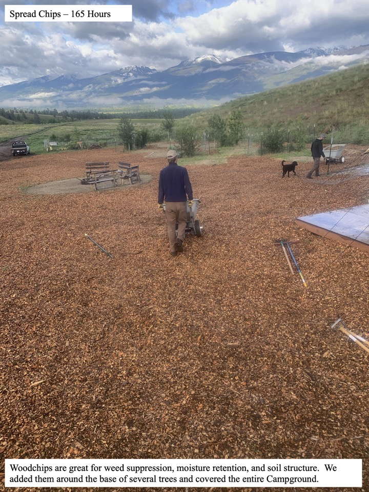 Woodchips are great for weed suppression, moisture retention, and soil structure.