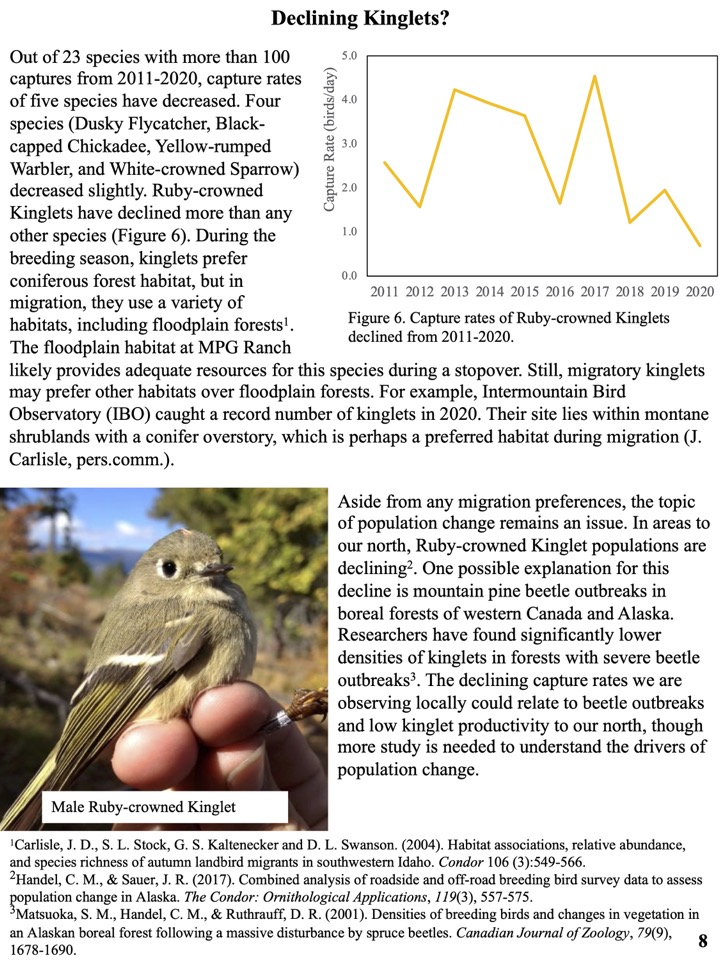 Four species (Dusky Flycatcher, Black- capped Chickadee, Yellow-rumped Warbler, and White-crowned Sparrow) decreased slightly. Ruby-crowned Kinglets have declined more than any other species