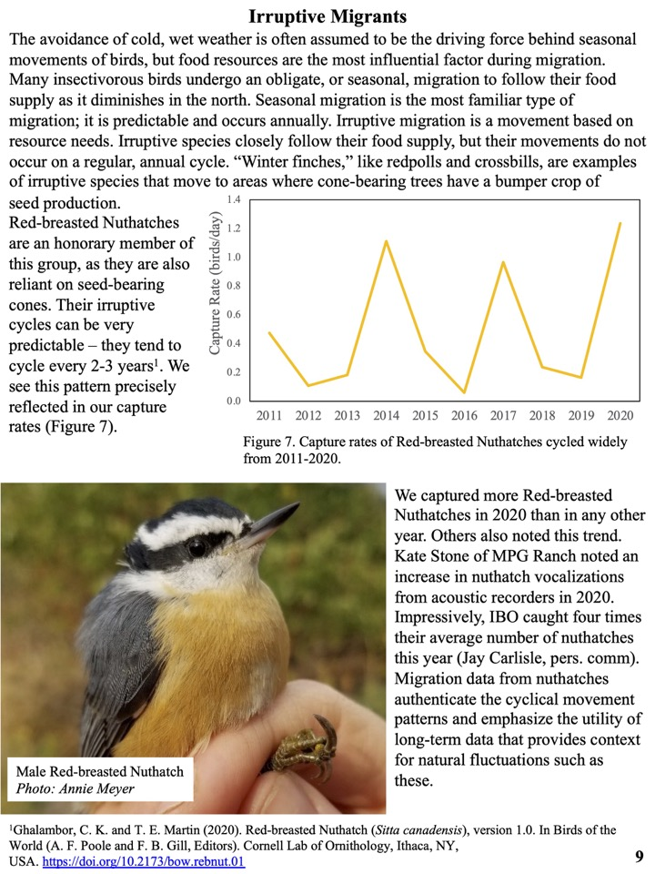 The avoidance of cold, wet weather is often assumed to be the driving force behind seasonal movements of birds, but food resources are the most influential factor during migration.