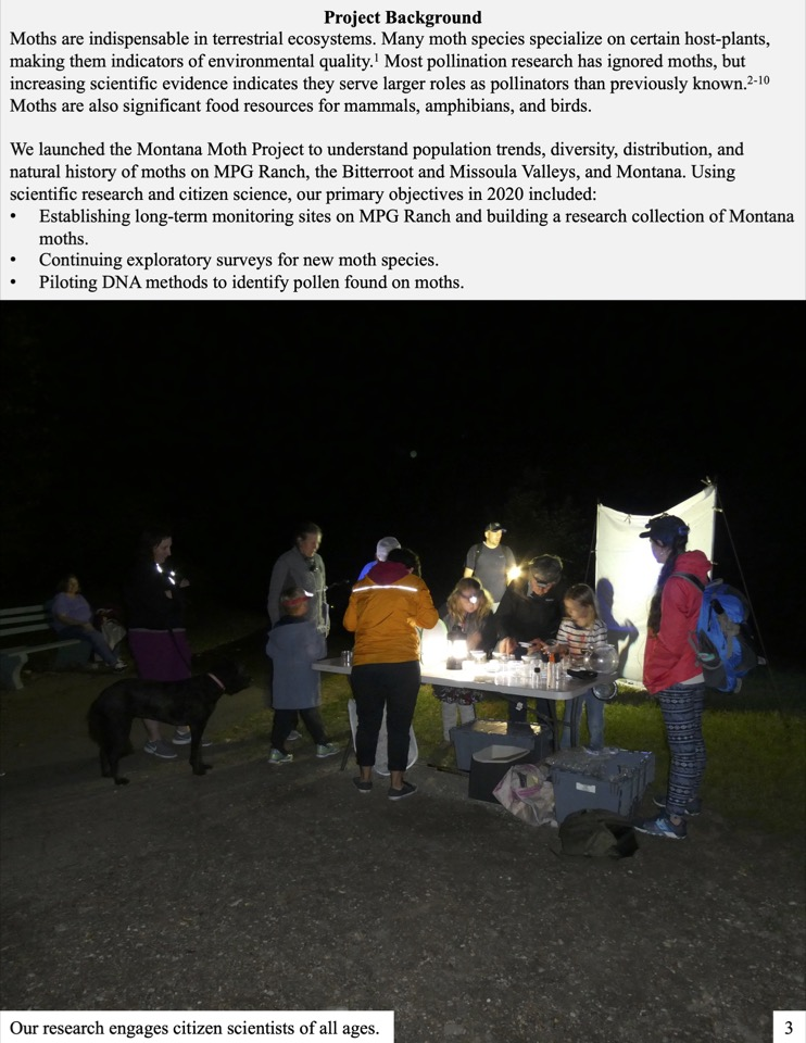 We launched the Montana Moth Project to understand population trends, diversity, distribution, and natural history of moths on MPG Ranch, the Bitterroot and Missoula Valleys, and Montana.