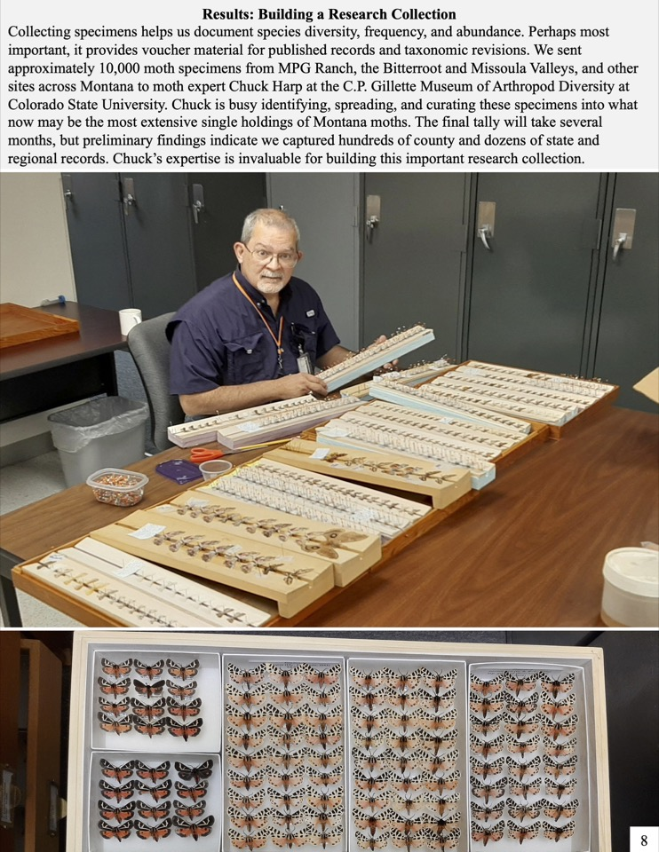 Collecting specimens helps us document species diversity, frequency, and abundance. Perhaps most important, it provides voucher material for published records and taxonomic revisions