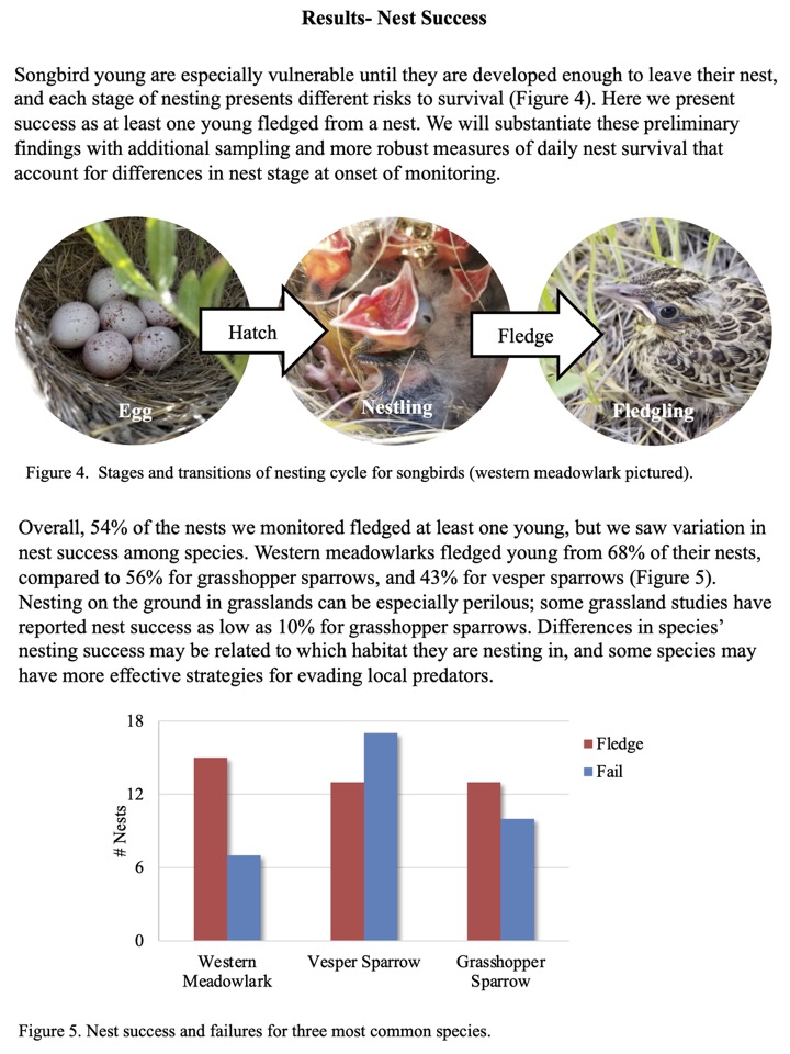 Songbird young are especially vulnerable until they are developed enough to leave their nest, and each stage of nesting presents different risks to survival