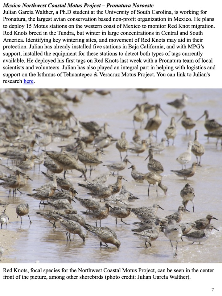 Mexico Northwest Coastal Motus Project – Pronatura Noroeste