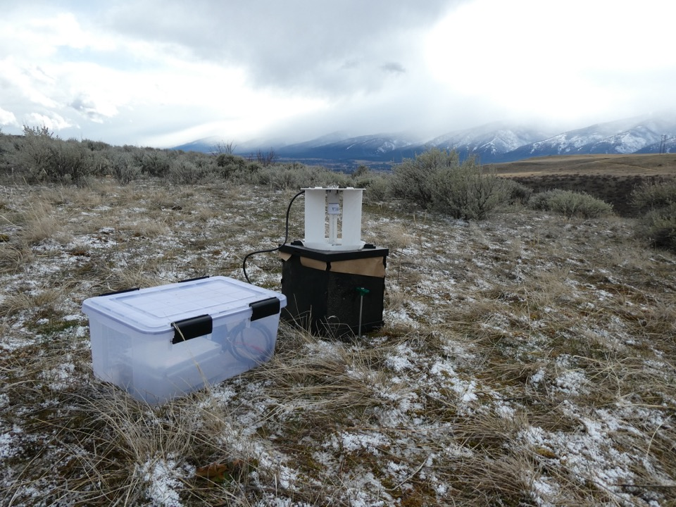 A light trap we set up at the Beehives site.