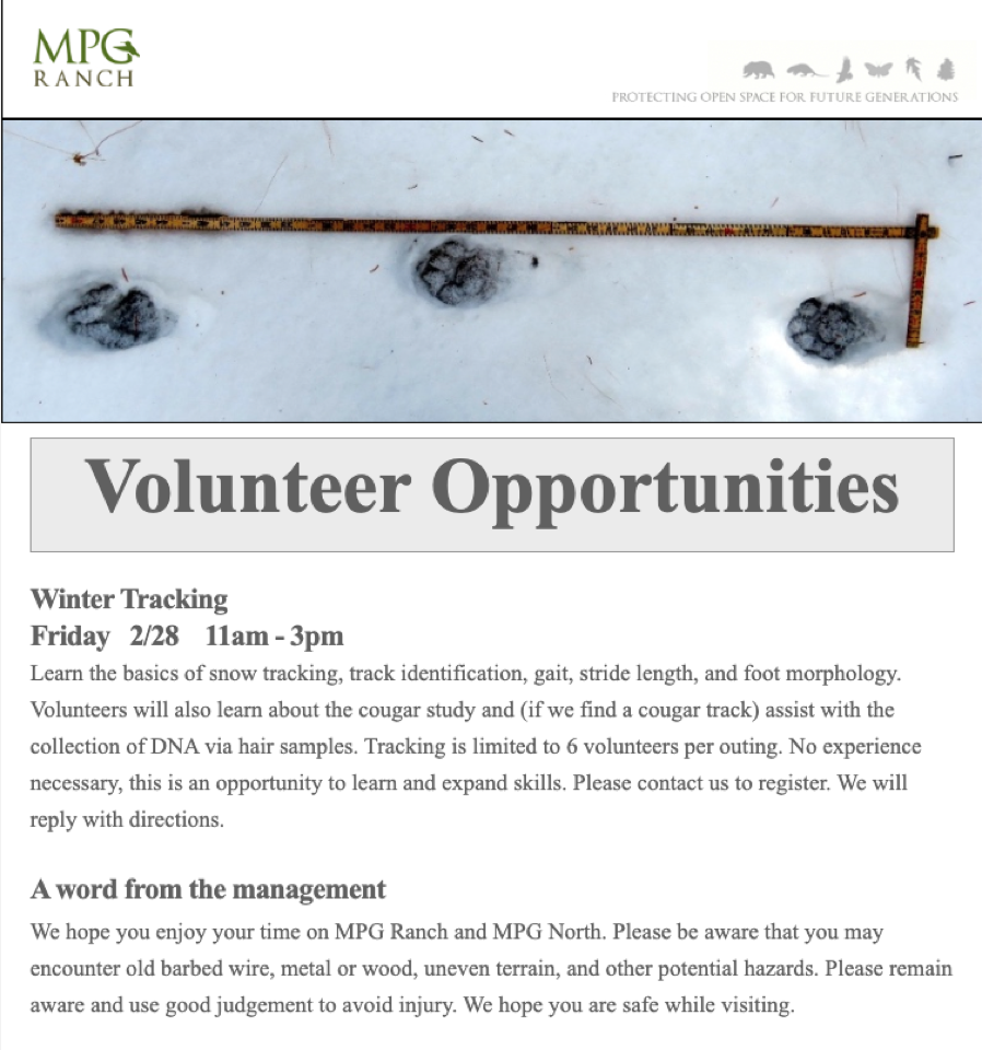 2020 Feb Volunteer Opportunities