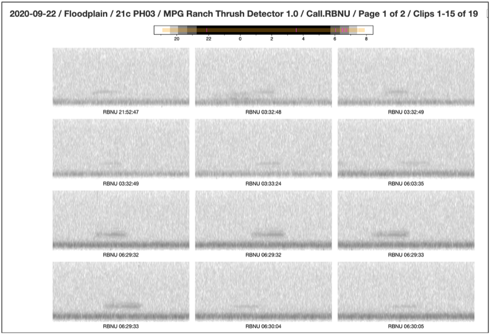 : This screenshot of our Vesper software interface shows the spectrograms and timestamps for Red-breasted Nuthatches during one September night.