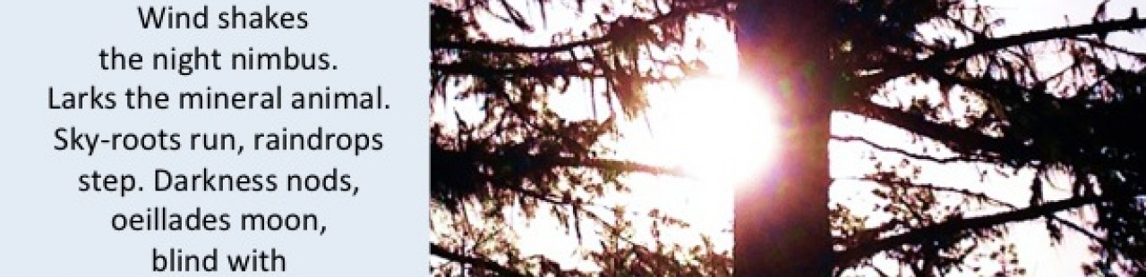 Sunrise featured image.