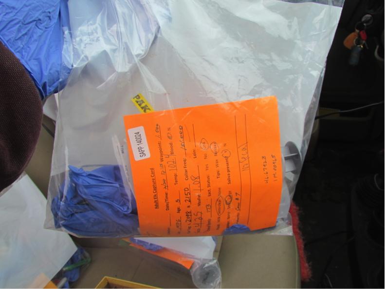 A data collection bag assigned to each elk contained feces and blood collection supplies. Biologists recorded heart rate and temperature several times throughout each capture to keep track of elk stress levels.