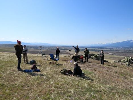 Two groups of community volunteers visited MPG Ranch on 4/19 and 4/24 to assist with observation and tracking of the spring raptor migration
