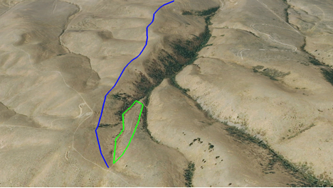 The blue line indicates the line of fence posts removed, and the green line indicates the area of weeds cleared.