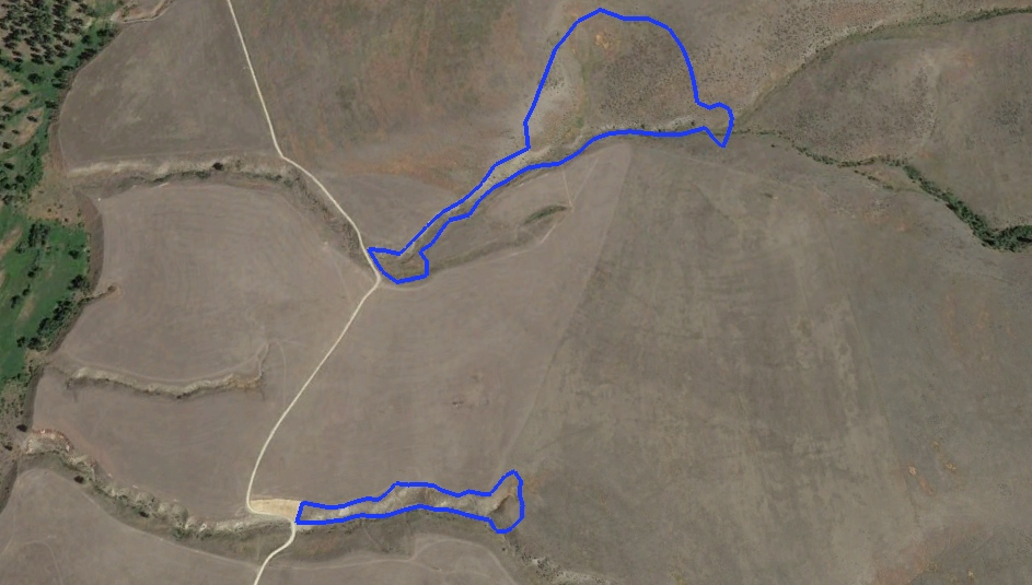 The volunteers seeded the areas inside the blue lines. Lower Sheep Camp Draw (top) seeding occurred over 15.5 acres. Lower Tongue Creek (below) covers about 2.9 acres.