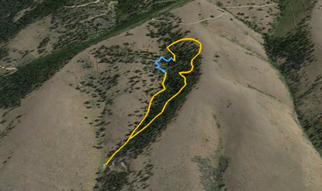The yellow line indicates the total area the group covered. The blue line shows the mountain lion track.