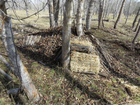 This photo shows the front side of the debris hut. Instructors left the ribs exposed to show how it was constructed. The shelter is essentially an 'A' frame tent stuffed with leaves and covered with leaves to an ideal depth of 3-4 feet.