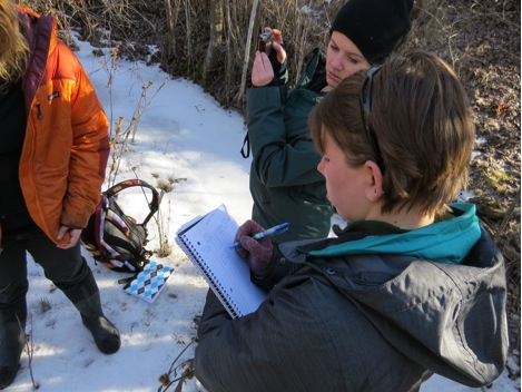 This photo is of  WEN staff in Woodchuck Creek. They took GPS data and photos to identify research sites. Woodchuck Creek had only a few sites where the creek was deep enough for testing, though this will change in spring with an increase in flow.
