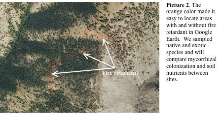 The orange color of fire retardant is visible using Google Earth.