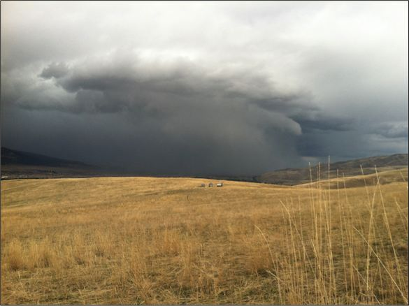 Storms create surges of raptor sightings.
