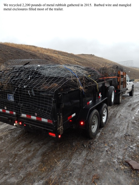 We recycled 2,200 pounds of metal rubbish gathered in 2015. Barbed wire and mangled metal exclosures filled most of the trailer.