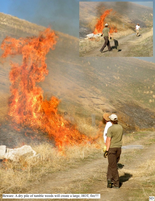 Beware: A dry pile of tumble weeds will create a large, HOT, fire!!!