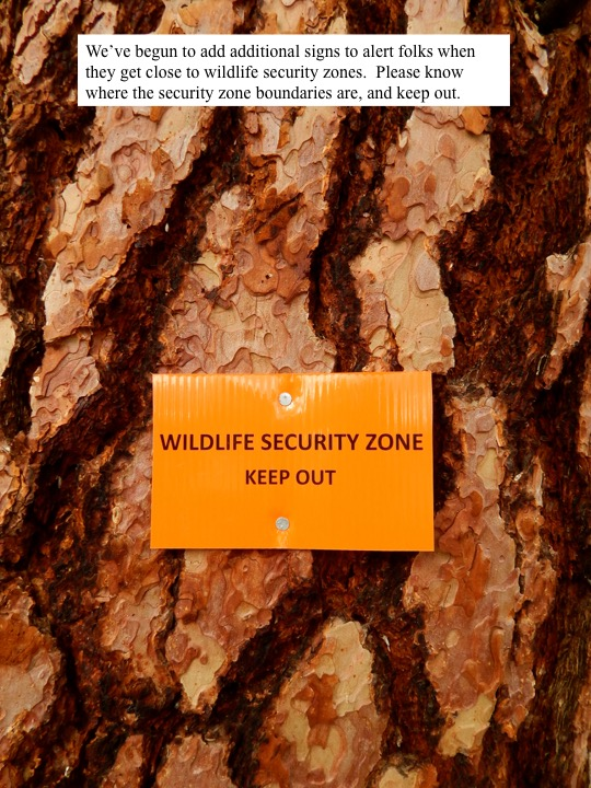 We've begun to add additional signs to alert folks when they get close to wildlife security zones. Please know where the security zone boundaries are, and keep out.