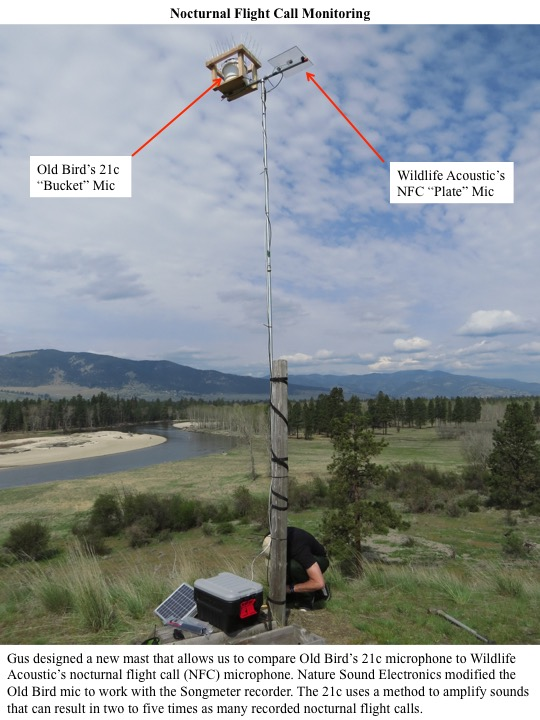 Gus designed a new mast that allows us to compare Old Bird's 21c microphone to Wildlife Acoustic's nocturnal flight call (NFC) microphone. Nature Sound Electronics modified the Old Bird mic to work with the Songmeter recorder. The 21c uses a method to amplify sounds that can result in two to five times as many recorded nocturnal flight calls.