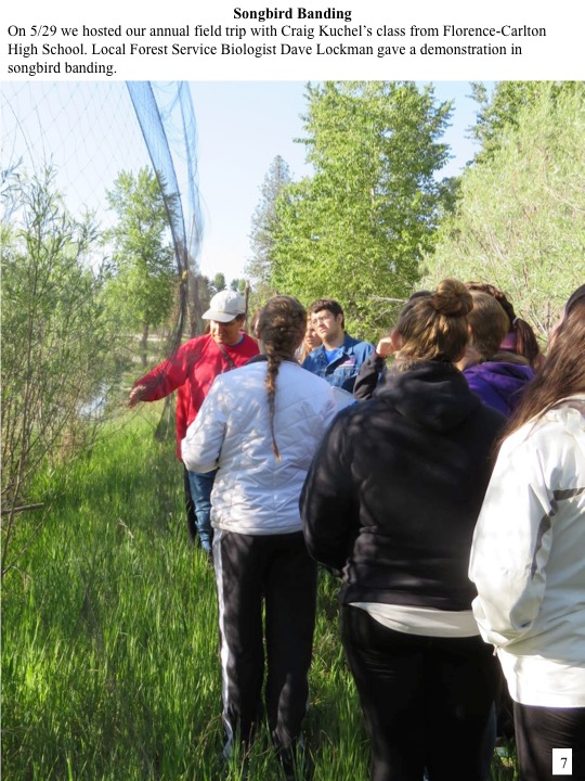 On 5/29 we hosted our annual field trip with Craig Kuchel's class from Florence-Carlton High School. Local Forest Service Biologist Dave Lockman gave a demonstration in songbird banding.