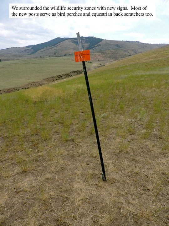 We surrounded the wildlife security zones with new signs. Most of the new posts serve as bird perches and equestrian back scratchers too.
