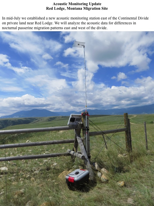 In mid-July we established a new acoustic monitoring station east of the Continental Divide on private land near Red Lodge. We will analyze the acoustic data for differences in nocturnal passerine migration patterns east and west of the divide.
