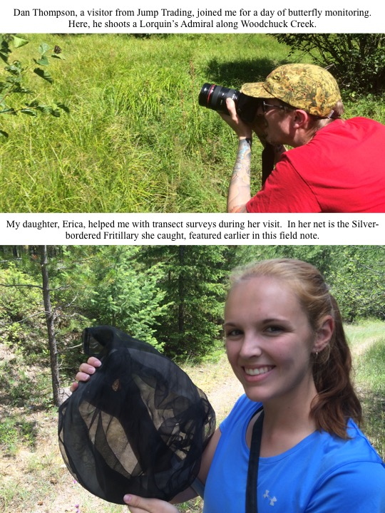 My daughter, Erica, helped me with transect surveys during her visit. In her net is the Silverbordered Fritillary she caught, featured earlier in this field note.