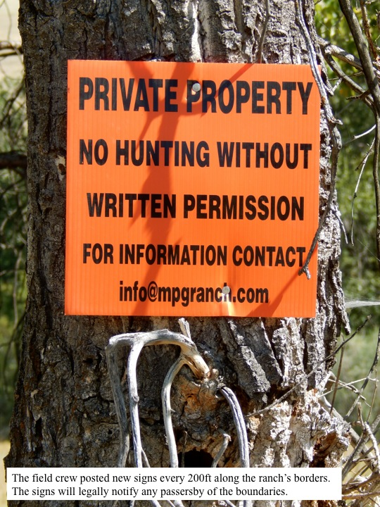 The field crew posted new signs every 200ft along the ranch's borders. The signs will legally notify any passersby of the boundaries.