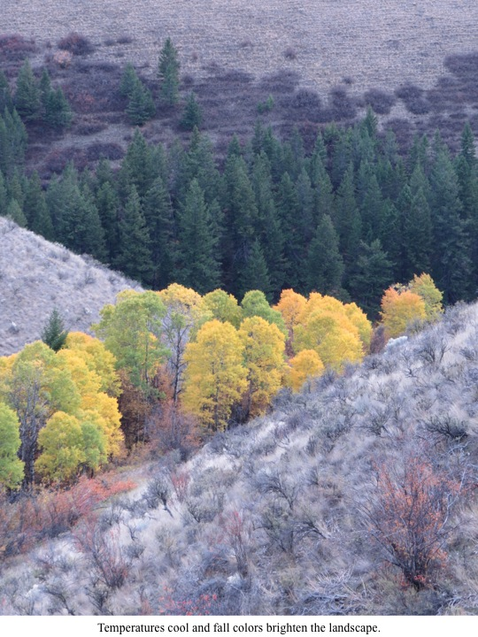 Temperatures cool and fall colors brighten the landscape.