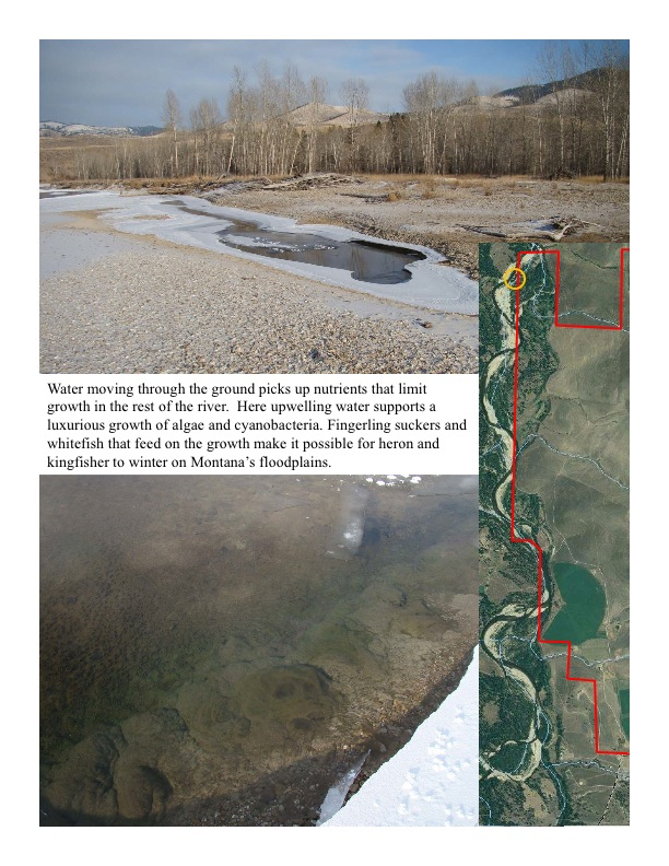 Re-allocation of nutrients in the floodplain