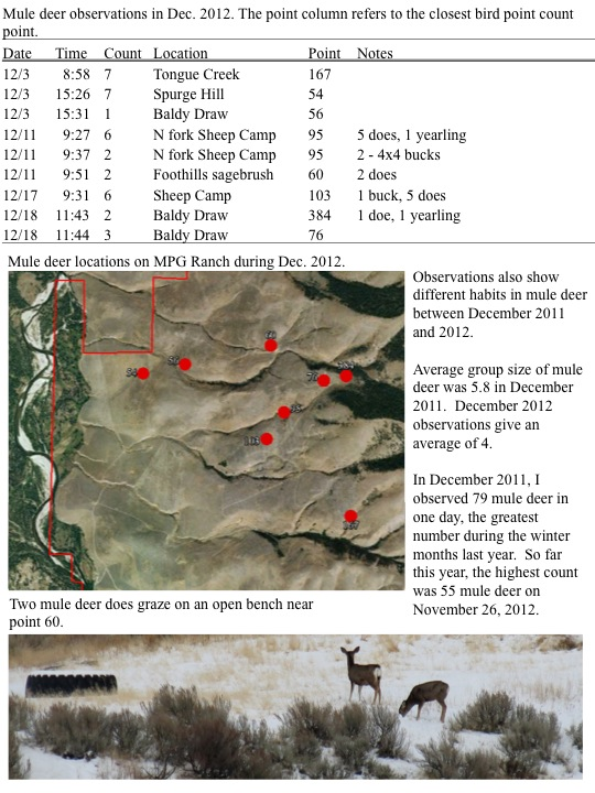 Mule deer observations in Dec. 2012.