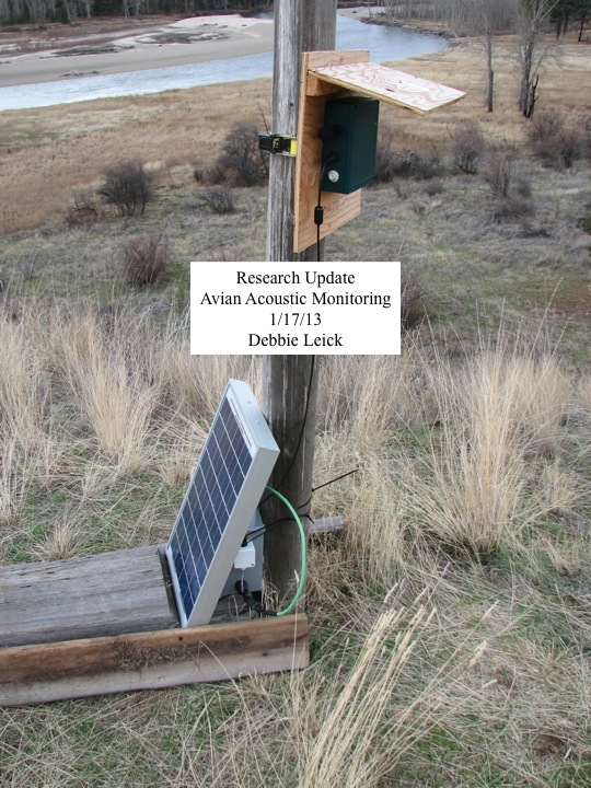 Avian Acoustic Monitoring Update