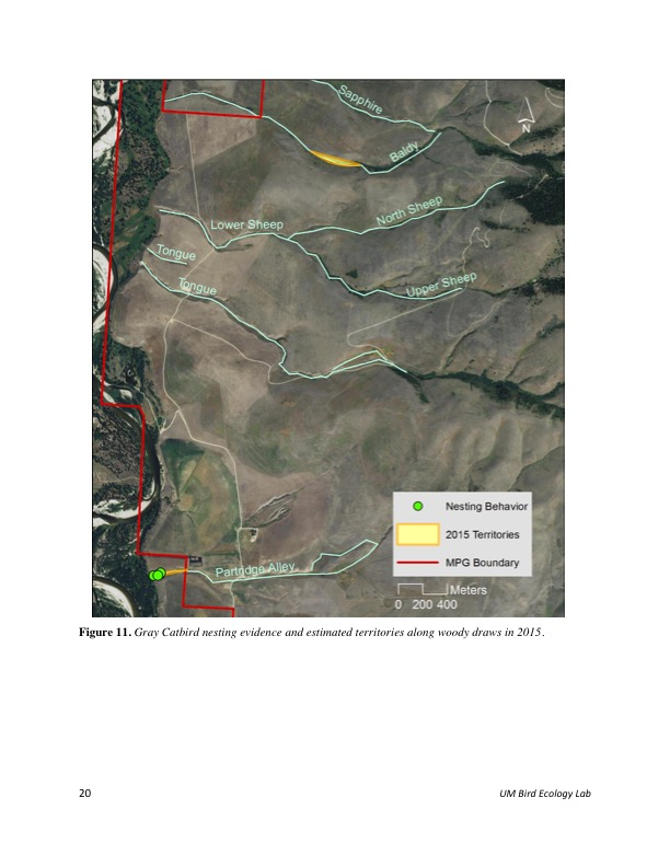 Figure 11. Gray Catbird nesting evidence and estimated territories along woody draws in 2015.
