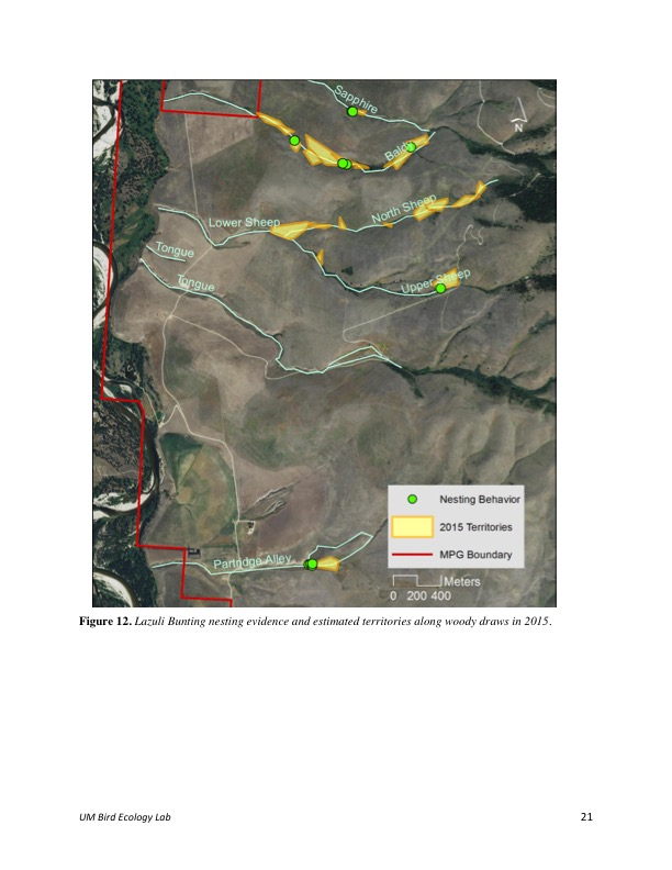 Figure 12. Lazuli Bunting nesting evidence and estimated territories along woody draws in 2015.