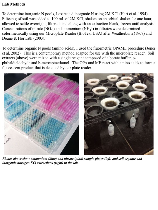 Photos above show ammonium (blue) and nitrate (pink) sample plates (left) and soil organic and inorganic nitrogen KCl extractions (right) in the lab.